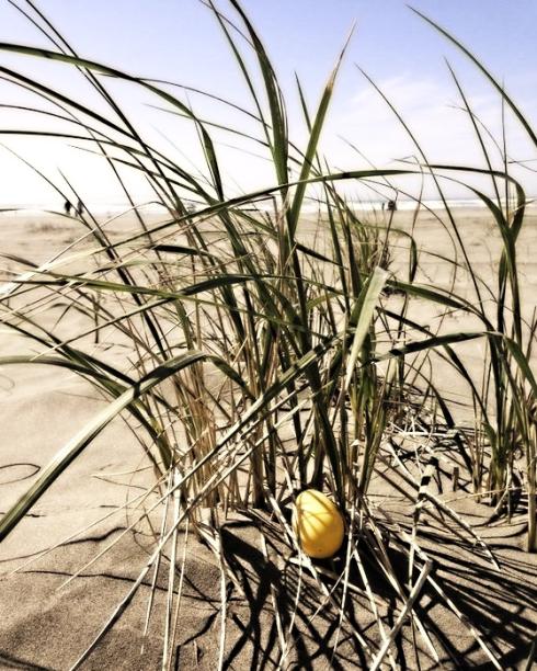 Easter egg beach 3